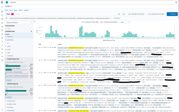 Docker Log Discovery in Kibana
